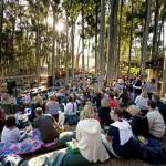 Summer season entertainment to begin at Cape's only forest amphitheatre