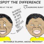Cartoon - The ANCWL Makes a Statement