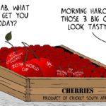 Cartoon - Cherry Picking?