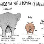 Cartoon - Relative Size