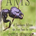 Book Review: Ants of Southern Africa