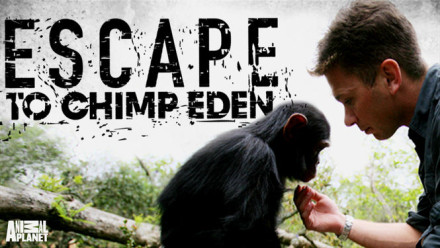 chimp-eden