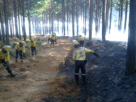 Fire fighters doing mop up after fire suppression