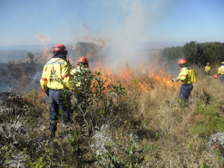 WoF is ready for the fire season starting in December and are already battling intense fires across the province since September.
