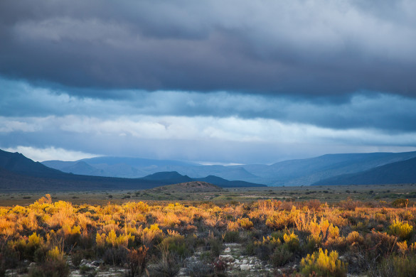 Anysberg Nature Reserve - South Africa