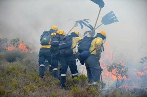 Fire fighters from Working on Fire on fire line at recent Muizenberg fires. Credit: IPS-WoF1