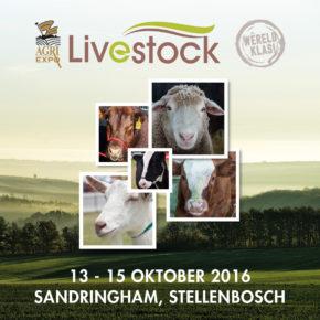 Agri-Expo Livestock banner 500x500px (AFR) 150dpi (1) (2)