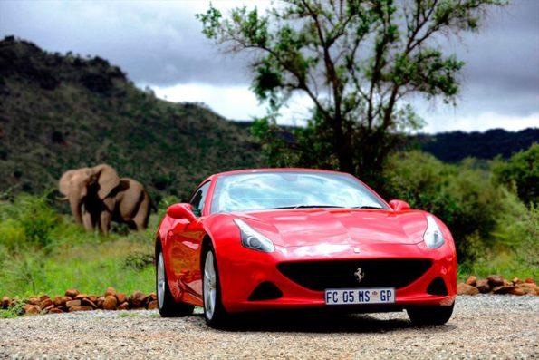 Ferrari California T: out in Africa. Picture: Quickpic